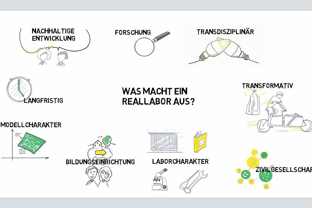 Darstellung über das Reallabor