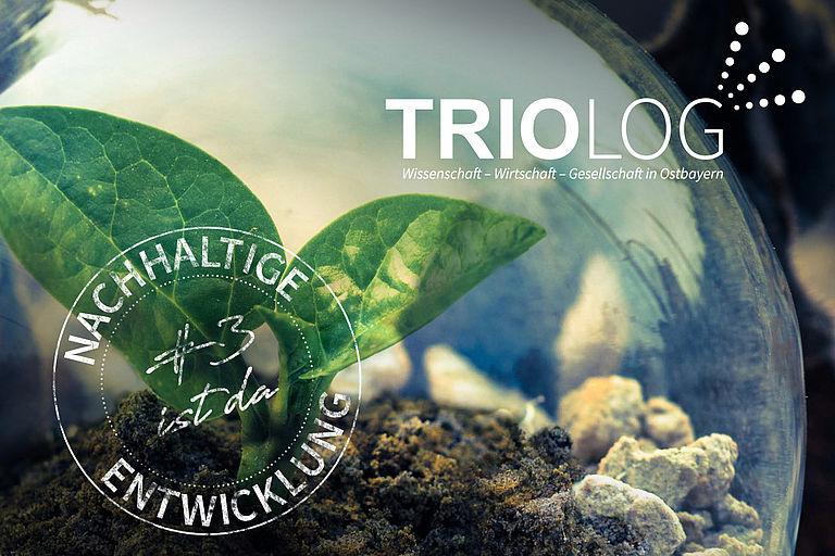 Titelgrafik der TRIOLOG #3