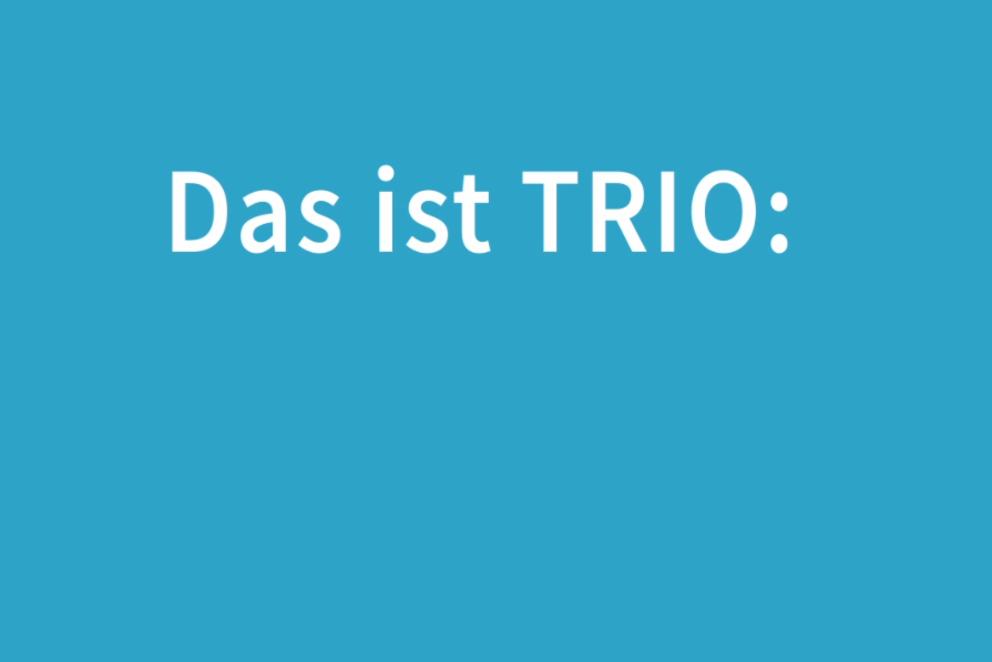 """Schriftzug """"Das ist TRIO"""""""
